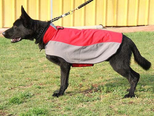 manteau pour chien pas cher cape imperm able h14. Black Bedroom Furniture Sets. Home Design Ideas
